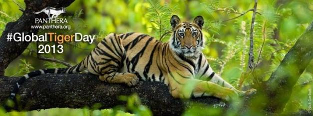 tiger_day
