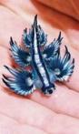 slug 3